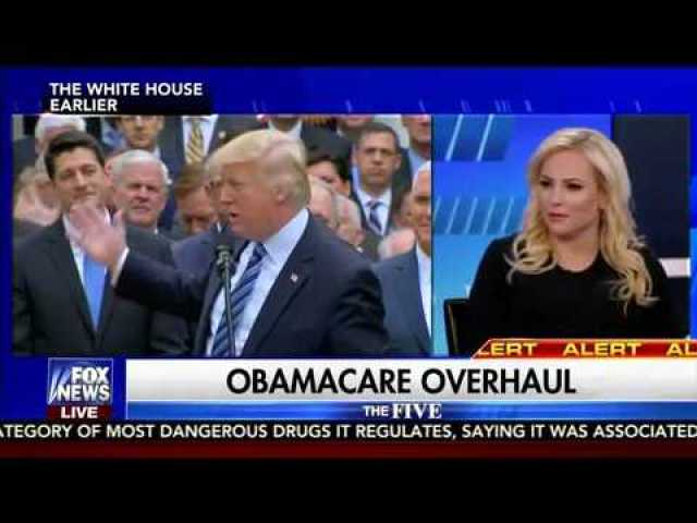 Fox News 'The Five'-Juan Williams and Meghan McCain erupt on set