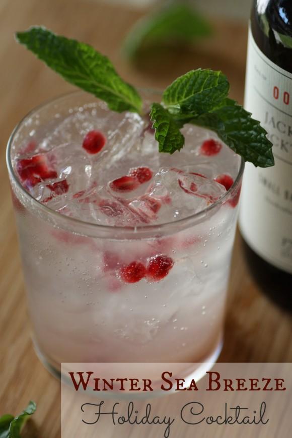 Winter-Sea-Breeze-Holiday-Cocktail-Recipe-
