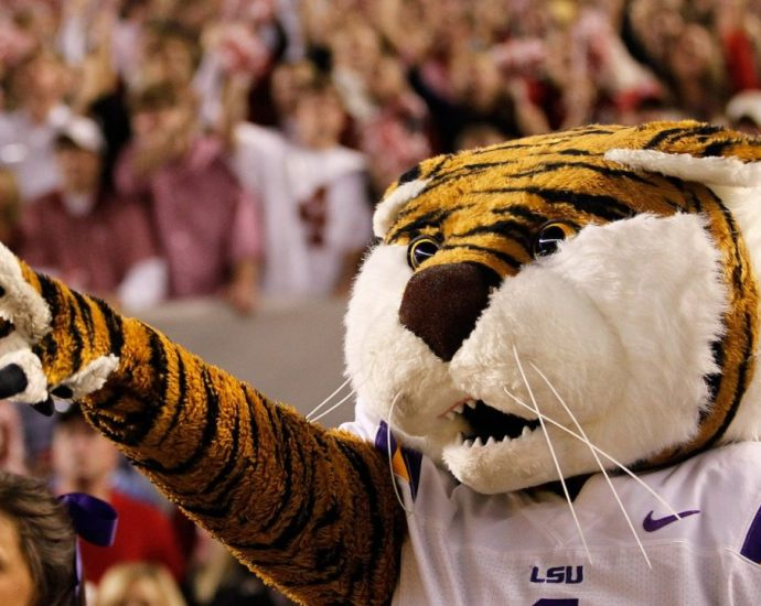 LSU students declare school's 'Tiger' mascot is a symbol of racism and 'white power'