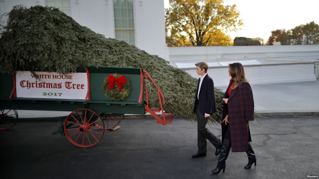 White House Christmas Tree Has Been Delivered