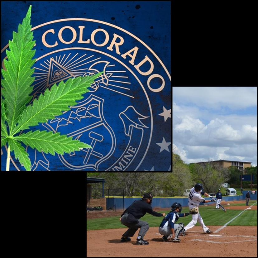 Texas university baseball coach rejected potential Colorado recruit over state's marijuana laws