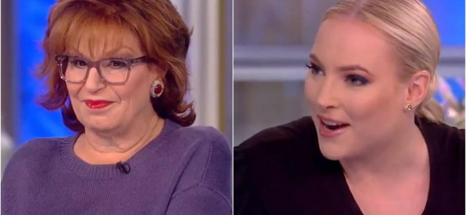 Joy Behar Suggests Meghan McCain Run For Office, McCain Asks Behar 'Would You Vote for Me?'