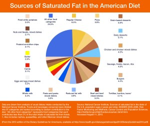 Sat Fat Sources