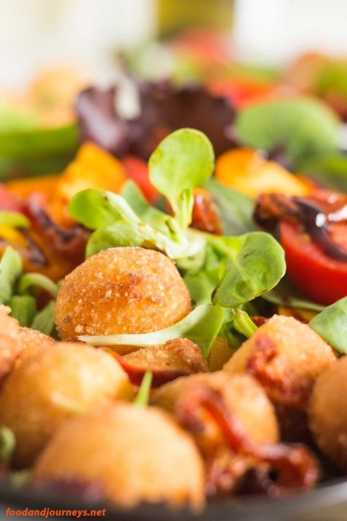 Fried Mozzarella & Tomato Salad pic1|foodandjourneys.net