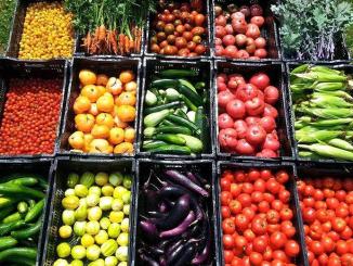 Many types of fresh produce in bins