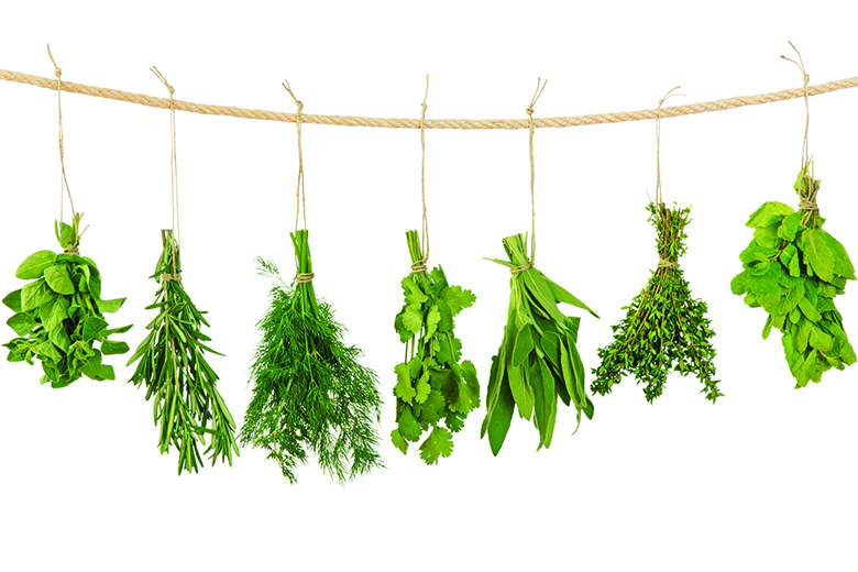 foodandnutrition.org - Deanna Segrave-Daly - Healthy Kitchen Hacks: Refreshing Herbs | Food & Nutrition | From the Magazine