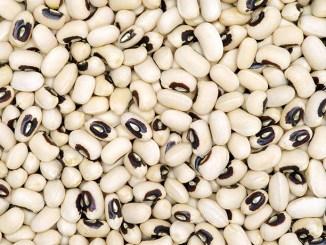 Black-eyed Beans texture