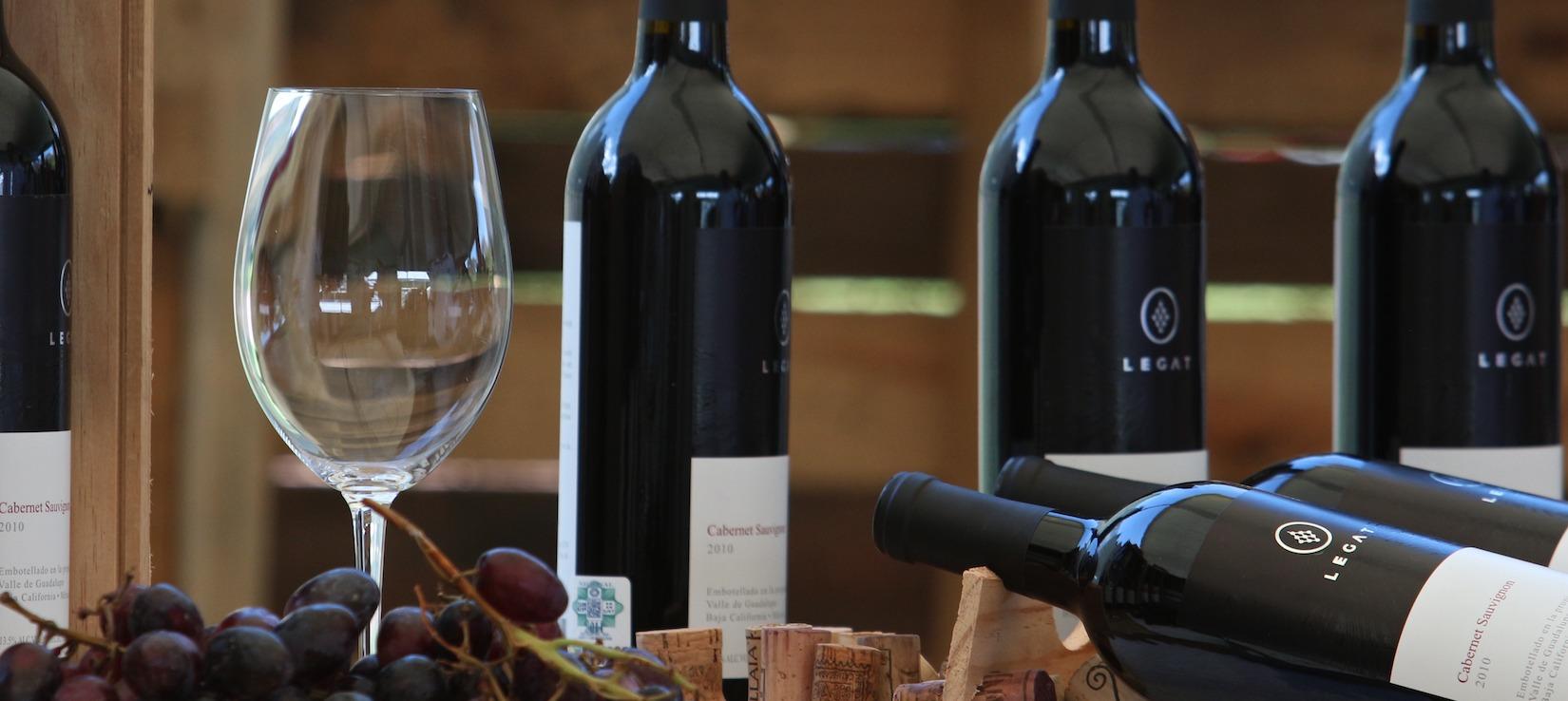 La Vendimia en Nuestra Tierra: Un fin de semana dedicado al vino en México
