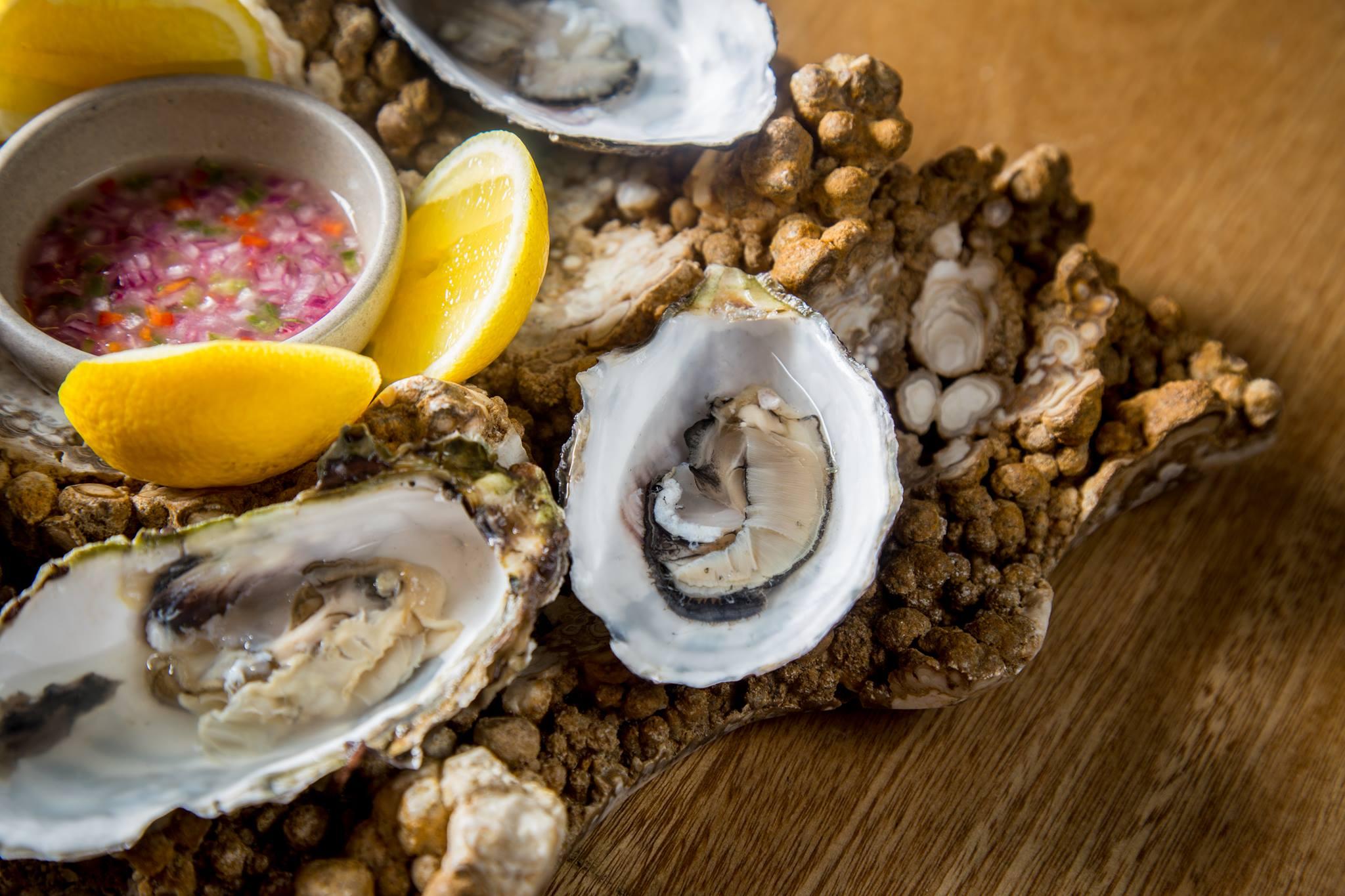 8 restaurantes en la CDMX con sabor a playa y vacaciones (te sentirás en la costa)