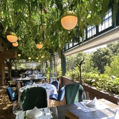 Animal Masaryk: el nuevo 'it place' de Polanco con gastronomía a las brasas y el ambiente más trendy