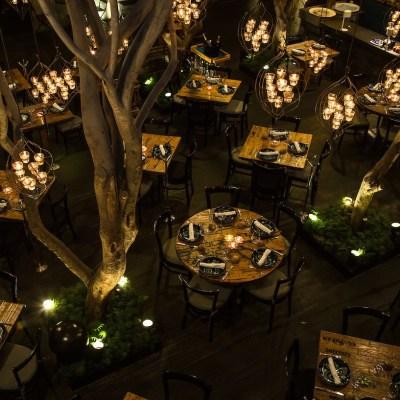 11 de los patios más románticos en la CDMX para ir por una copa de vino