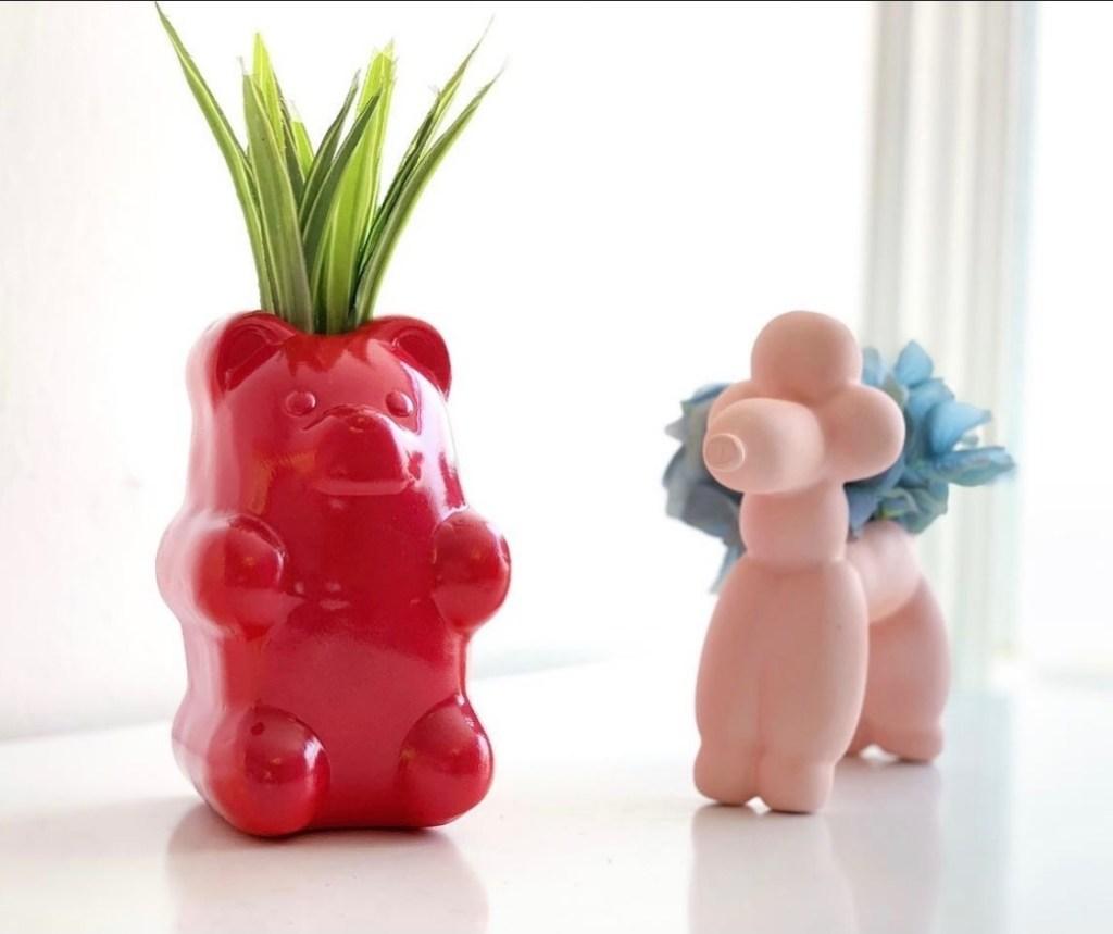 amor-vegetal-plantas