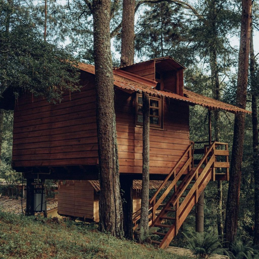 Estas casas del árbol (cerca de la CDMX ) son perfectas para un fin de semana con amigos