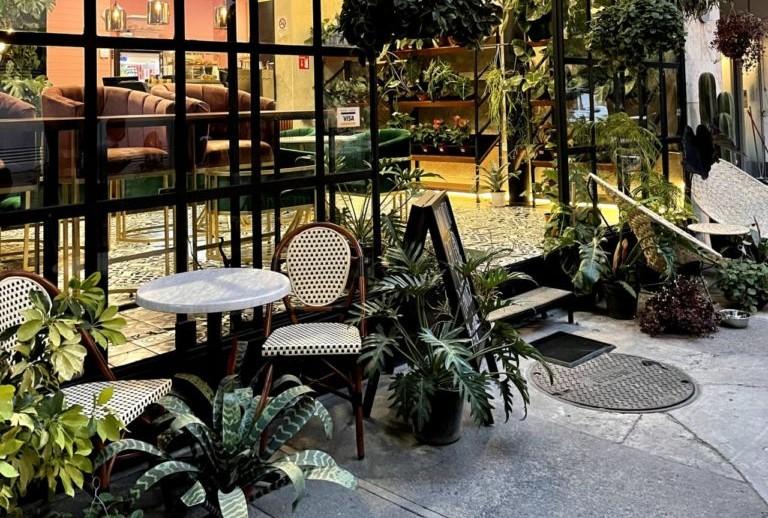 Este vivero en la Condesa tiene un increíble café y un entorno para disfrutar del verde en todo su esplendor