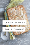 lemon scones for a crowd
