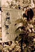 IMG_7388Jane's Tea garden