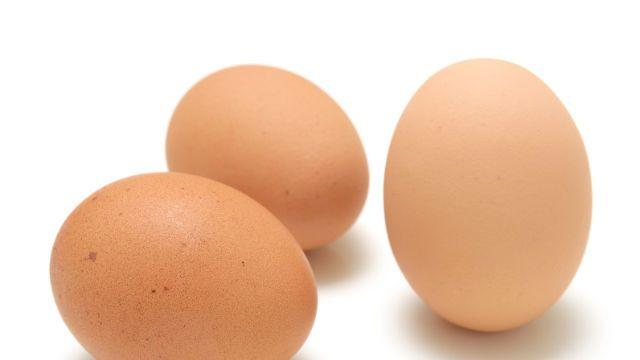 eggshell-640×360