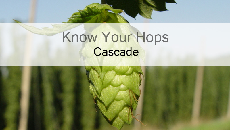 Know Your Hops - Cascade