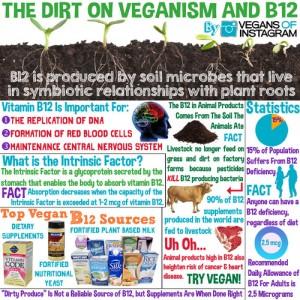 Vitaminb12 Benefits