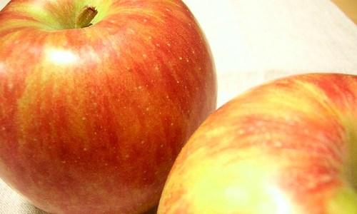 りんごの皮には含まれる栄養がスゴイ! 皮ごと食べろ!といわれる理由