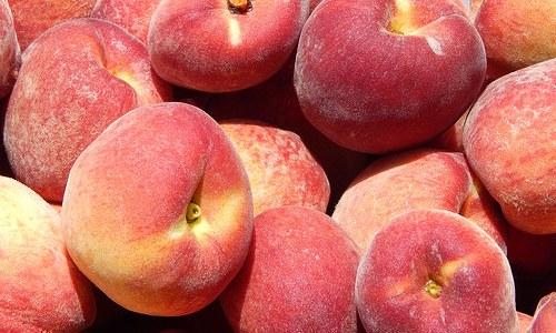 美味しい桃の選び方 チェックポイントをしっかり見て選ぼう!