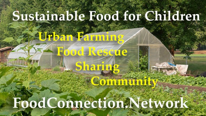 Sustainable Food for Children
