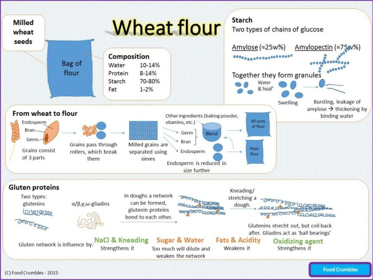 Wheat Flour Infographic