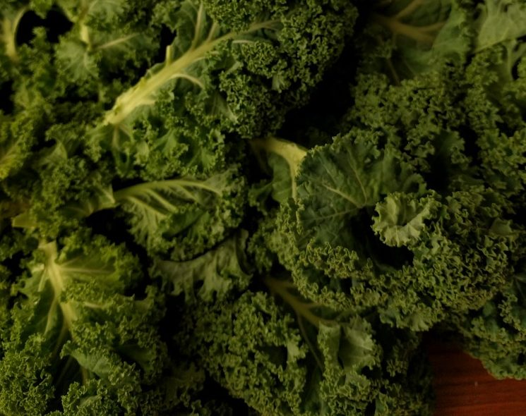 Why kale leaves shrink upon cooking - Leafy vs root vs ...