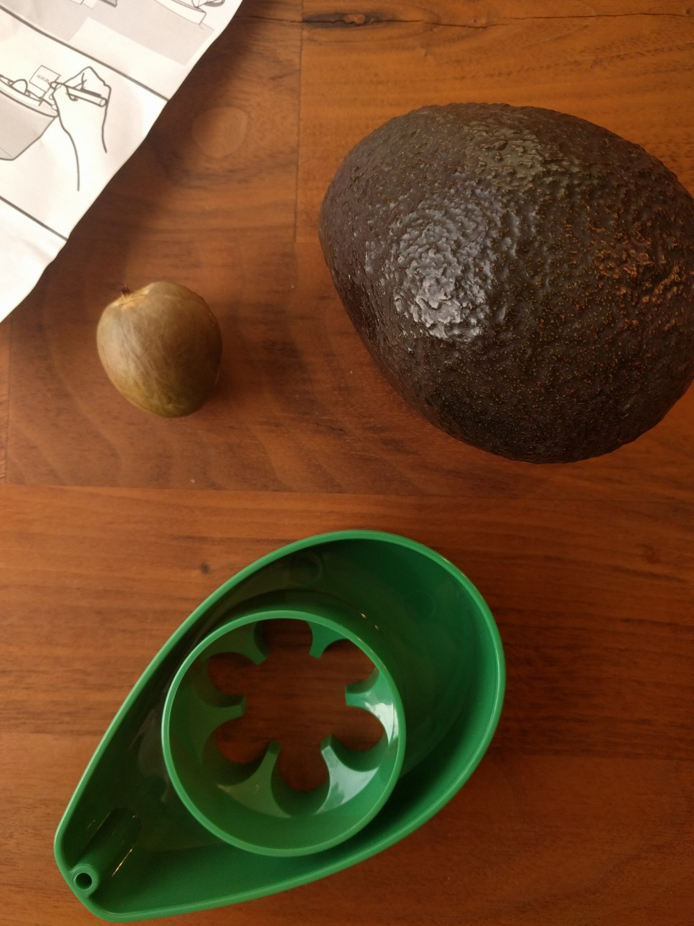 Growing avocados – Using an Avoseedo