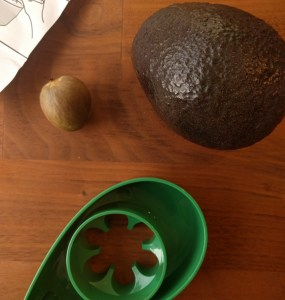 growing an avocado