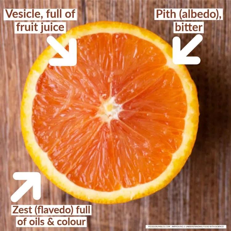 Orange - different parts of the orange-1
