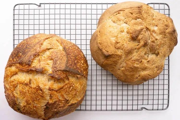 Sullivan bakery's whole wheat bread, left in closed dutch oven, right open tray
