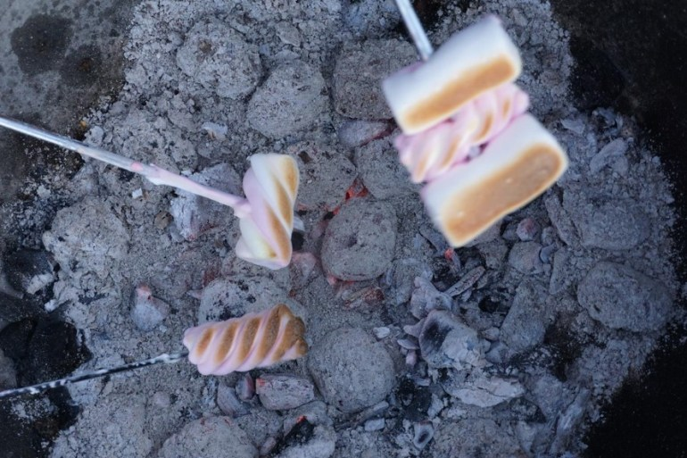 Roasting marshmallows over a campfire - ready