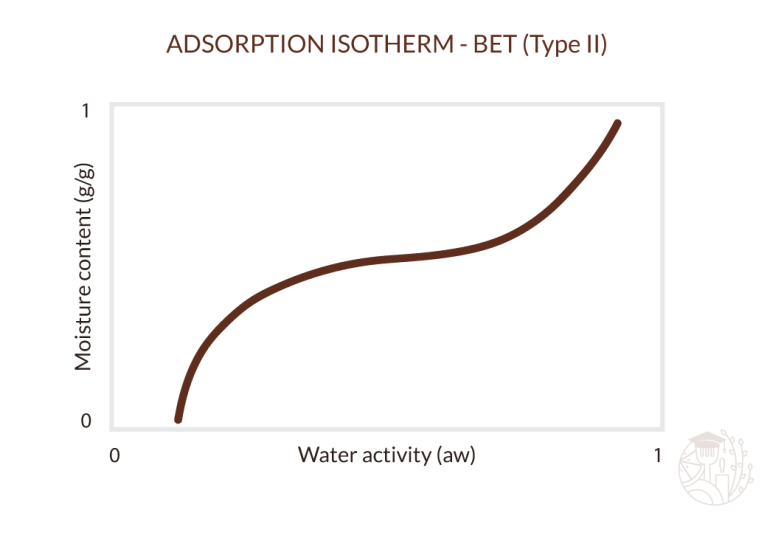 BET adsorption isotherm