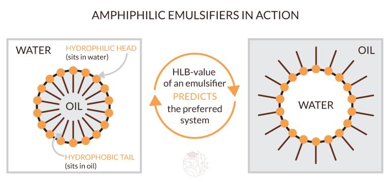 amphiphilic emulsifiers in action