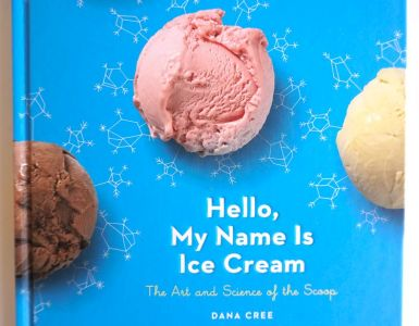 hello my name is ice cream book cover