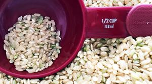 brown-rice-short-grain