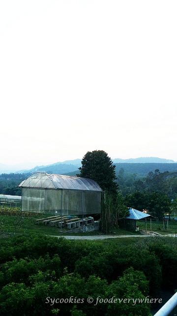 3.Titi Eco Farm Resort