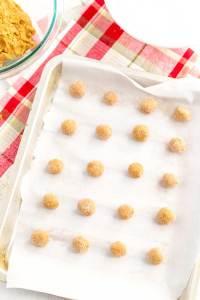Step 5 - Ginger Snaps Recipe