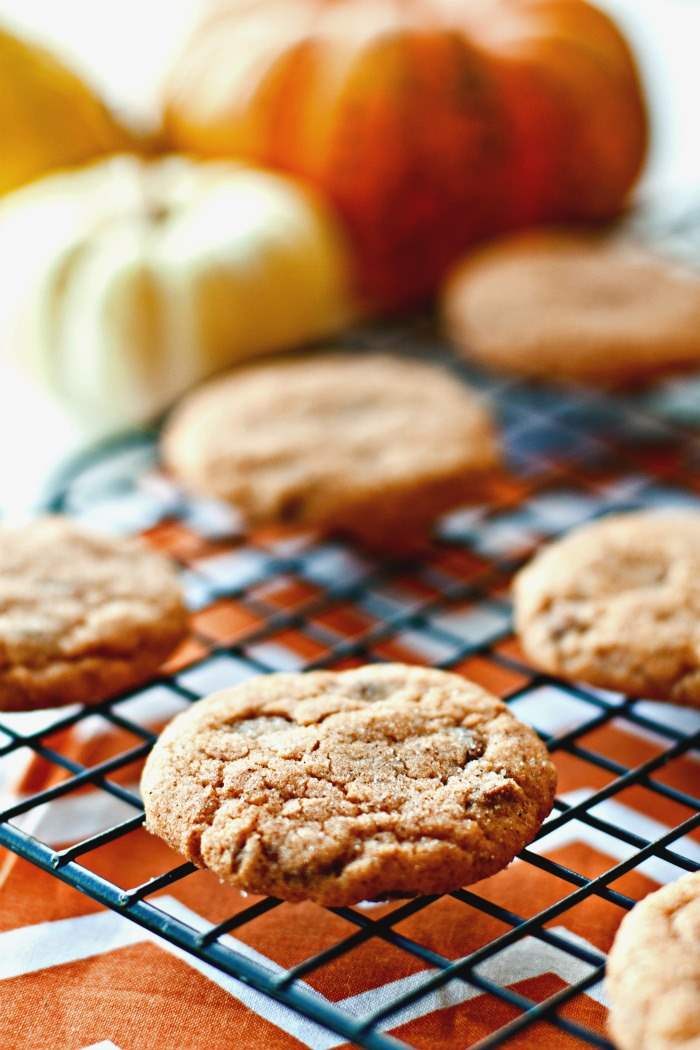 Close up picture of pumpkin cookies.