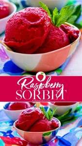 Easy homemade Raspberry Sorbet recipe.