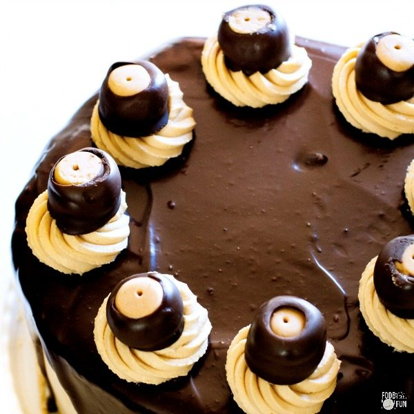 A top view of Buckeye Brownie Cheesecake Cake with two layers of fudgy brownies