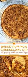 Quick and Easy Baked Pumpkin Cheesecake Dip - an easy Fall dessert.