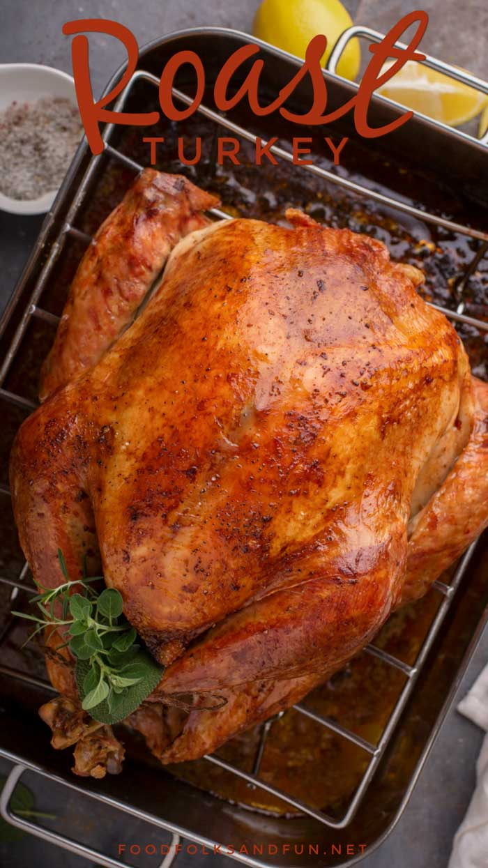 Overhead picture of a finished roast turkey in a roasting pan.