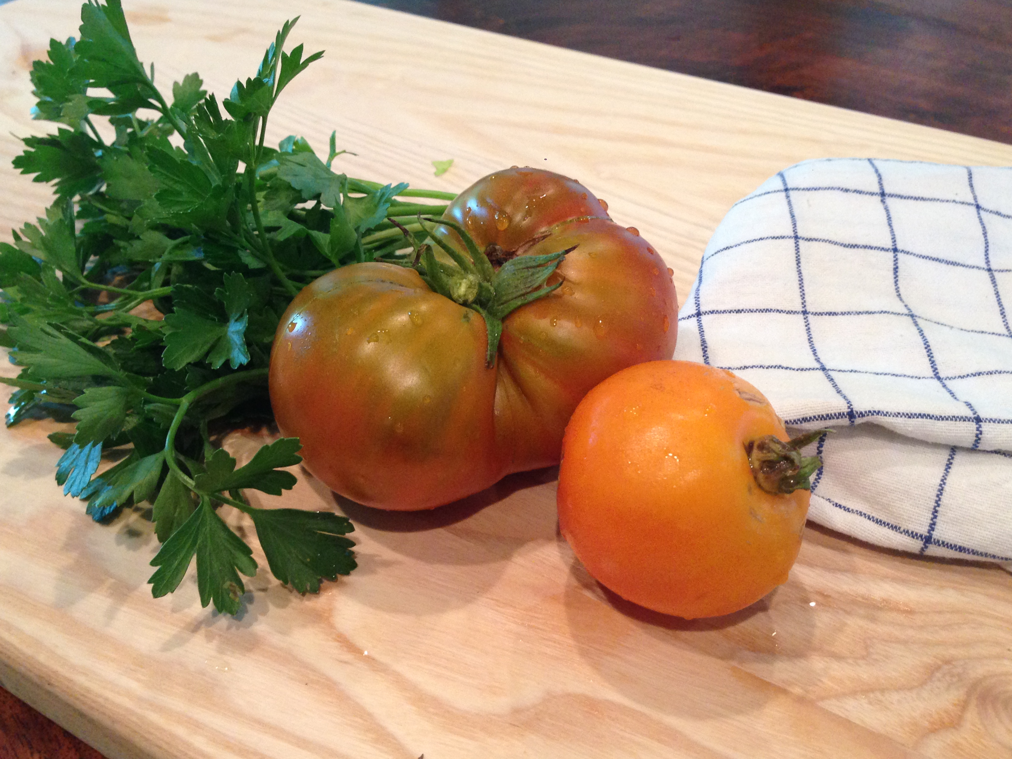 Tip of the Week! ((A how to for saving heirloom tomato seeds))