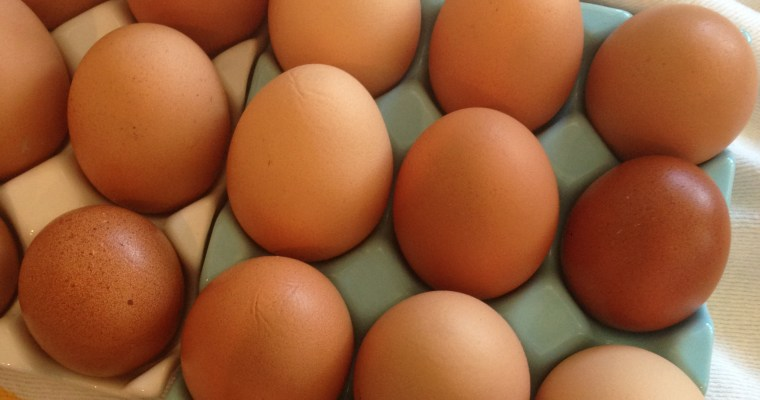 Tip of the Week ((a simple egg test — will yours pass??))