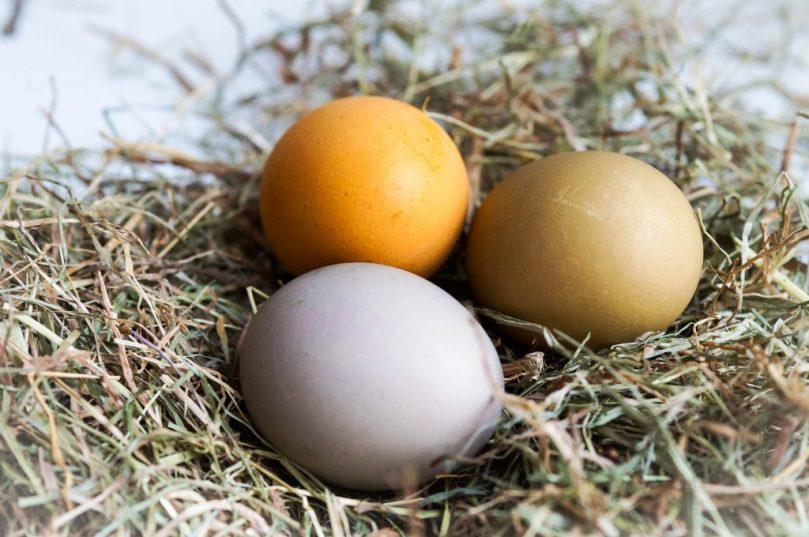 DIY Ostereier natürlich färben