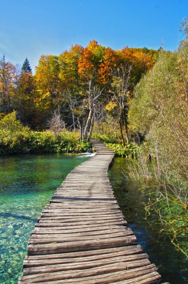 Plitvice Lakes - Photo by Domagoj Sever