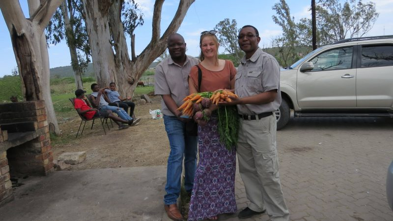 Researchers buying produce at the first local farmers market in Alice, Eastern Cape