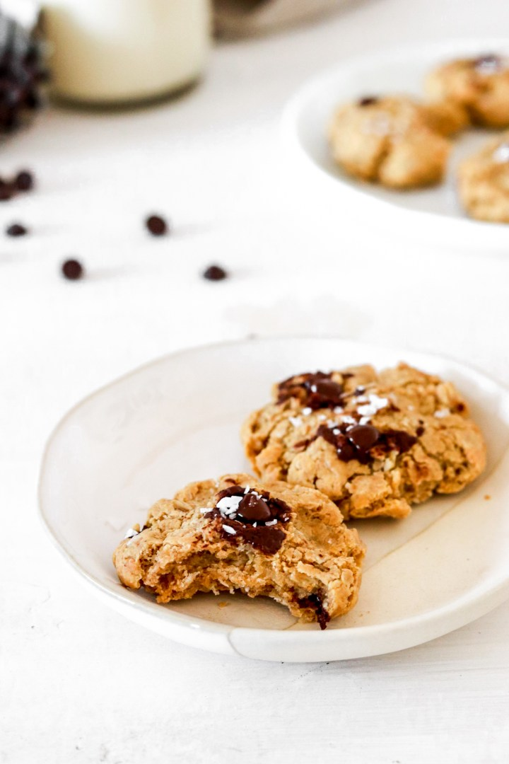 Chocolate Chip Oatmeal Peanut Butter Cookies (Gluten, Dairy, Oil & Sugar Free)